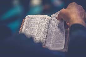 21 JWs Read Scriptures